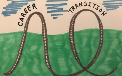 The Career Transition Roller Coaster – 4 Simple Steps to Smoothing Highs and Lows, Episode 1